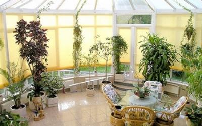 оранжерея в частно доме