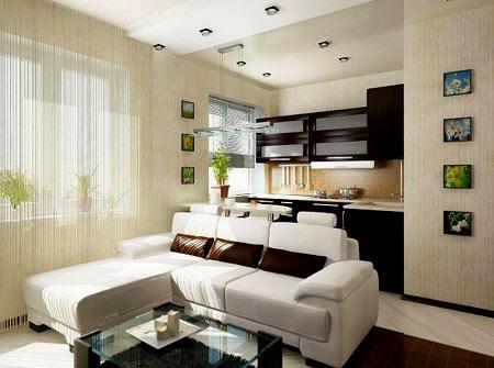 совмещенная кухня и комната