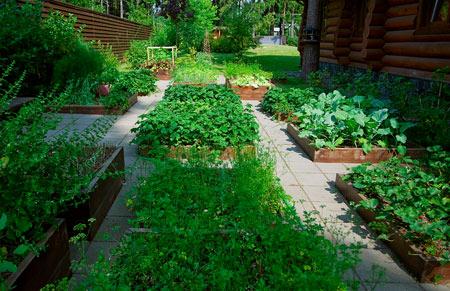обустройства огорода